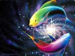 За знаком рыб идет