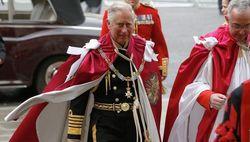 Принц Чарльз вместо королевы провел церемонию посвящения в орден Бани