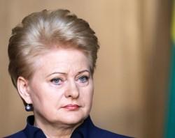Фактически Россия воюет со всей Европой – Грибаускайте