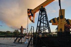 Цены на нефть демонстрируют рост на мировом рынке