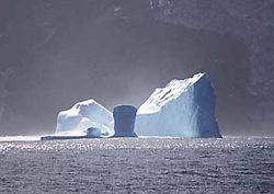 В Антарктике от ледника откололся айсберг размером с Сингапур