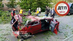 В Киеве из-за урагана упало дерево на авто – погиб ребенок