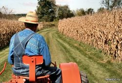 Россияне бегут из аграрного сектора