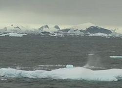 Из-за глобального потепления Антарктида превращается в Гренландию