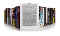 11 популярных брендов электронных книг у россиян в июле 2014г.