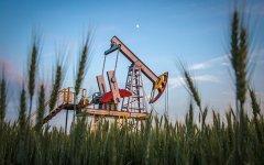 Нефть уже по 50 долларов, но эксперты пессимистичны