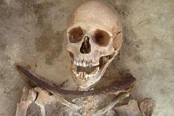 В Польше археологи исследовали могилы людей с серпами на шеях