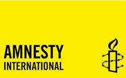 Amnesty International заявила о военных преступлениях «Айдара»