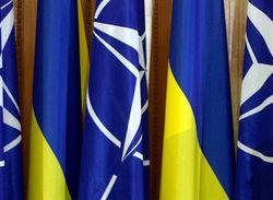 НАТО поможет разминировать Донбасс