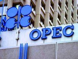 Катар включился в конкурентную гонку стран ОПЕК