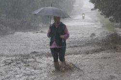Бабье лето в Украине обещают после потопа в конце сентября
