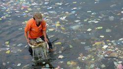 Рыбы стали питаться пластиковым мусором в морях
