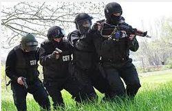 «Альфу» обвиняют напрасно: спецназ не получал приказа по Славянску