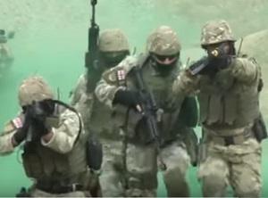 НАТО не рассматривает военные варианты по Украине – генсек Альянса