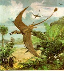 """Динозавры превратились в птиц почти """"мгновенно"""""""