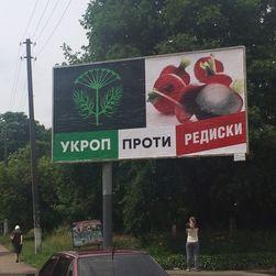 Первые итоги выборов в Украине: УКРОП не выполнил планы Коломойского