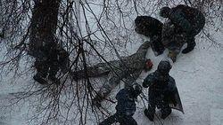 МВД Украины на основаниии сообщений СМИ предполагает, что Жизневского убила женщина