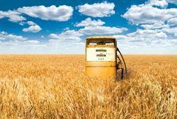 Топливная биомасса может снизить потребление газа в Украине на 18 процентов