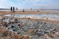 На спасение Куяльницкого лимана нужно 3 года и 33 миллиона гривен