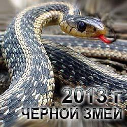 Год Черной Змеи