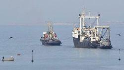 Военно-морские учения Украины и США пройдут в Черном море с 8 по 10 сентября