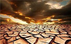 Это будет климатический ад: прогноз ООН к середине века