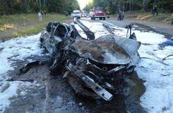 МВД Украины: сгоревший под Запорожьем в авто мог покончить с собой