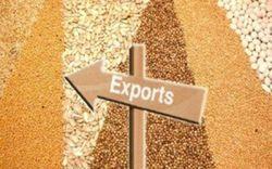 Украина наращивает экспорт агропродукции, но ее качество падает