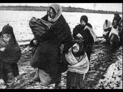Был ли геноцид российских немцев в 1941 году?
