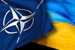 НАТО оперативно отреагирует на обращение Украины за помощью