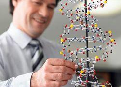 Для синтеза генома человека нужно 3 миллиарда долларов