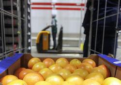 Россияне стали больше денег тратить на продовольствие