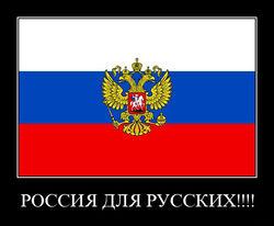 """Набирает популярность лозунг """"Россия для русских!"""""""