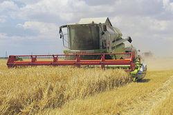 Аграрный сектор РФ тяжело болен