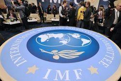 Россия была единственной страной, голосовавшей против транша МВФ для Украины