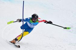 Великобритания бойкотировала из-за Украины Паралимпийские игры в Сочи