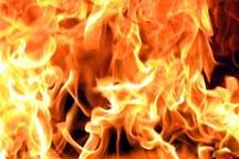 На Днепропетровщине снова взрывы: на воздух взлетел частный дом