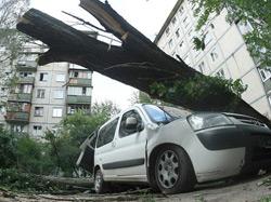 Черкасская область: ураган ломал деревья и рвал электропровода