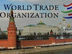 Россия после вступления в ВТО: Хочешь мира - готовься к торговой войне