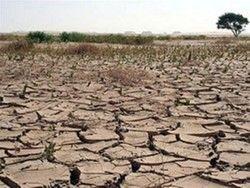 Потепление климата Земли влечет огромный ущерб сельхозпроизводству в мире