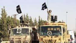 В Сирии погибли 17 граждан Узбекистана – члены военной организации «Исламское государство»