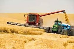 СНБО: жителей приграничных районов России призвали завершить сбор урожая до 3 августа