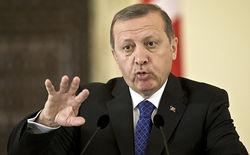 Путину не стоит говорить о геноциде после Крыма и Украины – Эрдоган
