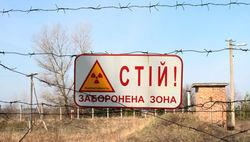 Зону отчуждения вокруг Чернобыльской АЭС превратят в биосферный заповедник
