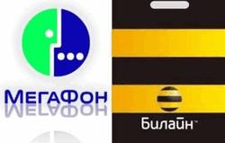 «Билайн» и «Мегафон» вернут деньги за голосование во втором туре