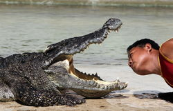В Индонезии тюрьму для наркодилеров будут охранять голодные крокодилы