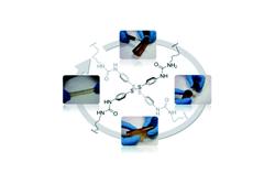 Испанские химики создали первый в мире восстанавливающийся полимер