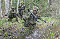 """Эстония начинает крупные военные учения """"Еж-2015"""""""