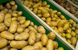 Обнуление пошлины на импорт картофеля не сдержит рост цен в России