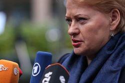 Украина на пороге гражданской войны - Президент Литвы Грибаускайте